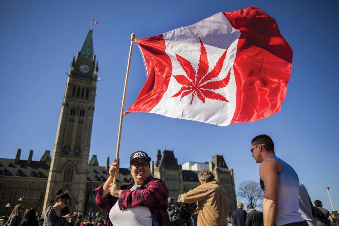 Canada hợp pháp hóa cần sa trong giải trí